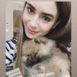 Among his celeb admirers are Lily Collins, the model