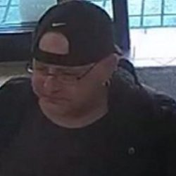 Police have renewed their appeal for information in the search for Dell Fay