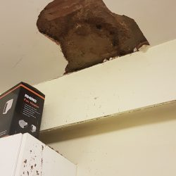 A chunk of the ceiling fell off in the Tissington Court flat
